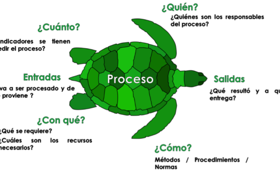 Consultores ISO Panama - Procesos Tortuga